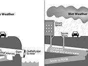 Đan Mạch phát triển robot giám sát giúp bảo trì hệ thống thoát nước