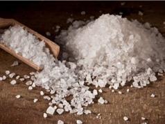 90% mẫu muối ăn trên thế giới chứa vi nhựa