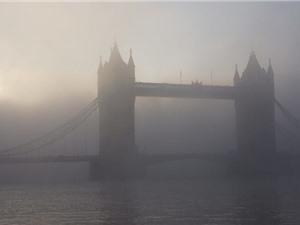 Ô nhiễm không khí làm phổi của trẻ em chậm phát triển