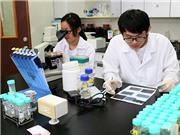 """Sinh viên Đài Loan đạt HCV với phát minh """"giấy thân thiện với môi trường"""""""