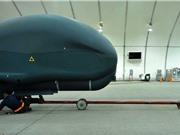 Anh Quốc cũng chạy đua phát triển robot sát thủ