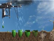 Startup phát triển drone để trồng lại rừng sau đám cháy