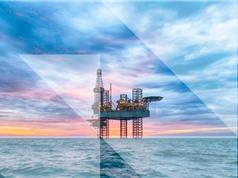 Các công ty dầu mỏ hầu như không bỏ tiền vào năng lượng tái tạo