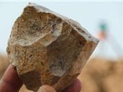 Phát hiện công cụ bằng đá niên đại 2,4 triệu năm tuổi có thể viết lại lịch sử loài người