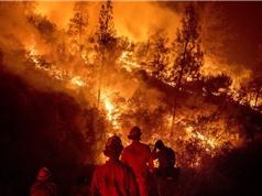 Các nước phải tăng mục tiêu giảm phát thải lên 5 lần mới tránh được thảm họa khí hậu
