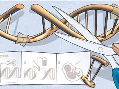Chỉnh sửa gene người: Bước tiến hay thảm họa?
