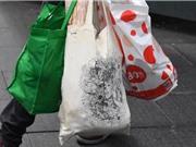 Lượng túi nilon tiêu thụ tại Australia giảm 80% trong ba tháng