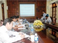 Quảng Trị: Nghiên cứu quy trình sản xuất và thương mại hóa sản phẩm Trà thảo dược hòa tan Giảo Cổ Lam từ nguồn nguyên liệu tự nhiên trên đảo Cồn Cỏ