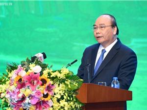 Thủ tướng đánh giá cao nỗ lực sớm đạt đẳng cấp quốc tế của Bệnh viện 108