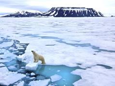 Bắc Cực nóng lên nhanh gấp hai lần so với phần còn lại của Trái đất