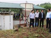 Hà Tĩnh: Ứng dụng tiến bộ KH&CN xây dựng mô hình xử lý môi trường chuồng trại chăn nuôi lợn công nghiệp