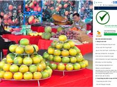 Dán tem truy xuất nguồn gốc: Bảo vệ thương hiệu Cam sành Hà Giang