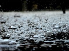 """Đừng bất ngờ vì bạn hoàn toàn có thể ngửi thấy """"mùi"""" của mưa"""