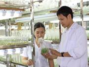 Giáo dục đại học Việt Nam 2019: Những dự báo