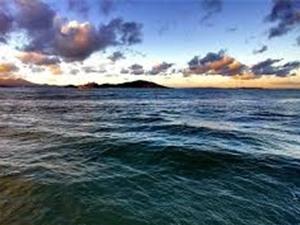 Nước ở đáy Thái Bình Dương góp phần kiềm chế tình trạng khí hậu nóng lên