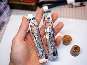 """Nhật Bản thứ gì cũng """"dị"""": Lấy nguyên con cá làm USB, dùng não cá để lưu dữ liệu"""