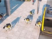 Chó robot giao đồ ăn trưa đến tận bàn