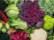 Cải xoăn và bông cải giúp ngăn ngừa ung thư đại tràng