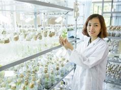 Thành lập Chi hội nữ trí thức Học viện Nông nghiệp Việt Nam