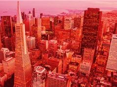 San Francisco xây dựng hệ thống giám sát người vô gia cư