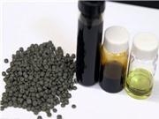 Kỹ thuật mới biến rác thải nhựa thành nhiên liệu sạch