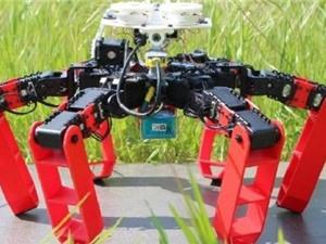 Phát minh loại robot mới có thể di chuyển mà không cần GPS