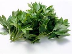 Nhật Bản: Loài thảo dược Ashitaba có chứa tinh chất chống lão hóa