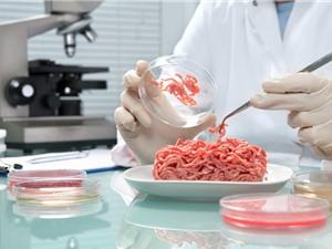 Thịt nhân tạo: xu hướng thực phẩm tương lai