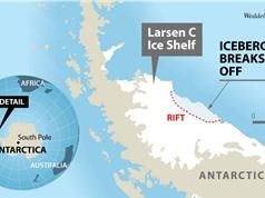 Thám hiểm Nam cực: Khám phá bí ẩn đại dương dưới lớp băng trăm nghìn năm tuổi