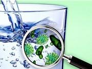 Vật liệu sử dụng ánh sáng Mặt trời để làm sạch nước uống