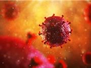 Cấy ghép tế bào gốc có thể trị HIV