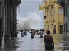 Cuba đưa vấn đề biến đổi khí hậu vào hiến pháp