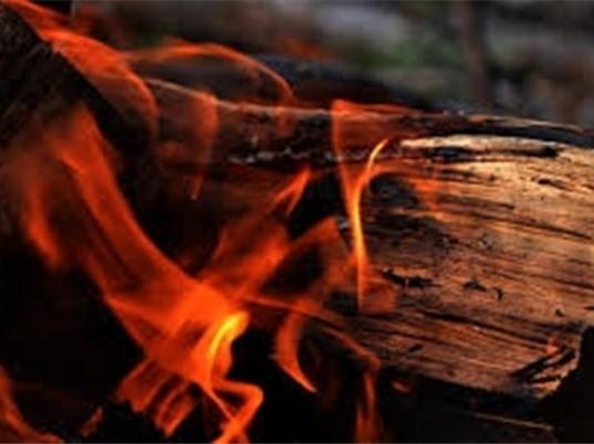 Mỹ tạo được loại vật liệu gỗ chịu lửa