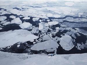Nhiệt độ sẽ tăng mạnh ở Bắc Cực