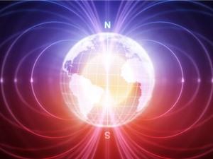 Con người có thể cảm nhận được từ trường của Trái Đất?