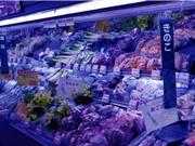 Nhật Bản sẵn sàng công nhận thực phẩm chỉnh sửa CRISPR an toàn
