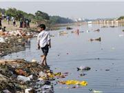 25% số ca tử vong sớm là do suy thoái môi trường