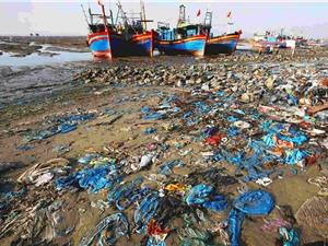 Những bước đi đầu tiên giảm thiểu ô nhiễm chất thải nhựa đại dương