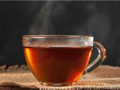 Uống trà quá nóng làm tăng nguy cơ ung thư thực quản