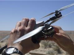 Hải quân Mỹ thuê tin tặc khắc chế drone