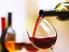 Uống rượu đều đặn không có tác dụng chống lại nguy cơ đột quỵ