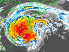 Dự báo bão nhiệt đới: Một câu hỏi khó