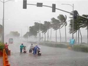Mô hình dự báo bão hạn mùa: Giảm thiểu và ngăn ngừa rủi ro trên biển