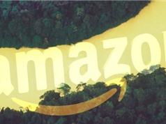 Cuộc chiến sở hữu tên miền Amazon