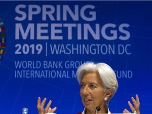 Những cảnh báo của WB và IMF