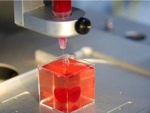 Israel chế tạo trái tim in 3D đầu tiên bằng mô người