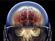 Chấn thương đầu khiến protein tau tích lũy trong não