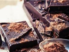 Chocolate giúp chống suy giảm và cải thiện năng lực trí não