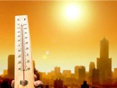 2019 có thể là năm nóng nhất trong lịch sử