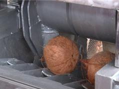 Bến Tre: Nghiên cứu công nghệ và thiết kế chế tạo hệ thống thiết bị cắt, tách gáo và làm sạch vỏ nâu cơm dừa